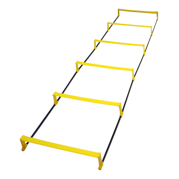 ELEVATION LADDER  009401