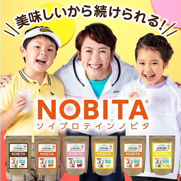 NOBITA ソイプロテイン 600g  fd-0002