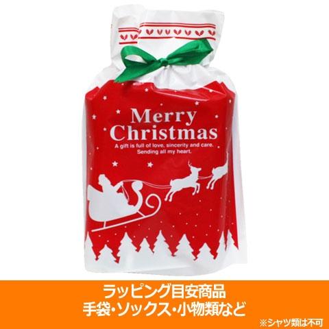 クリスマスラッピング 小  special-0119