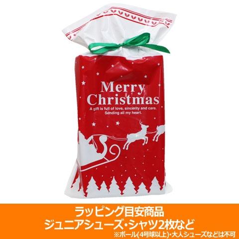 クリスマスラッピング 中  special-0120