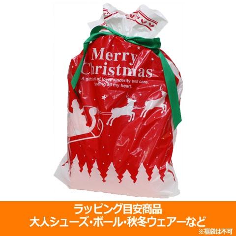 クリスマスラッピング 大  special-0121